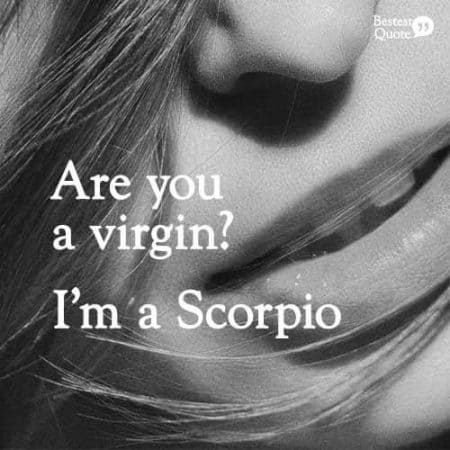 Are you a virgin? I'm a Scorpio. Funny Scorpio Quote