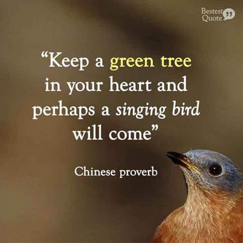 Keep a green tree in your heart and perhaps a singing bird will come. Chinese proverb