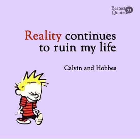 Reality continues to ruin my life. Calvin and Hobbes