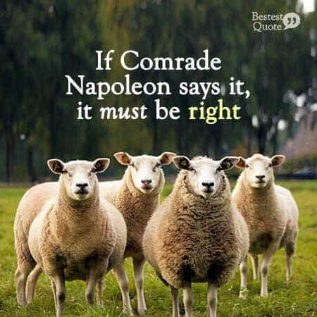 """""""If Comrade Napoleon says it, it must be right"""" George Orwell, Animal Farm"""