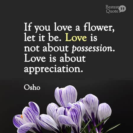 """""""If you love a flower, don't pick it up. Because if you pick it up it dies and it ceases to be what you love. So if you love a flower, let it be. Love is not about possession. Love is about appreciation."""" Osho"""