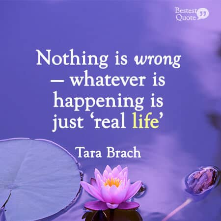 """""""Nothing is wrong—whatever is happening is just 'real life'."""" Tara Brach"""