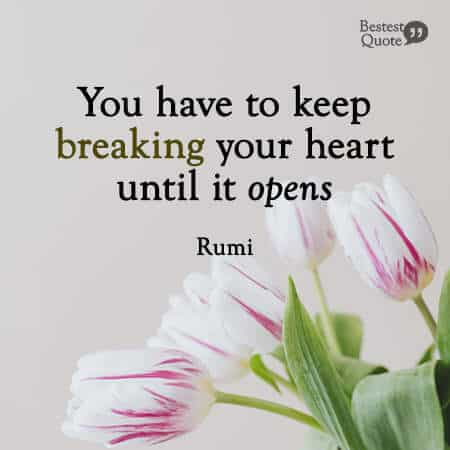 """""""You have to keep breaking your heart until it opens."""" Rumi"""