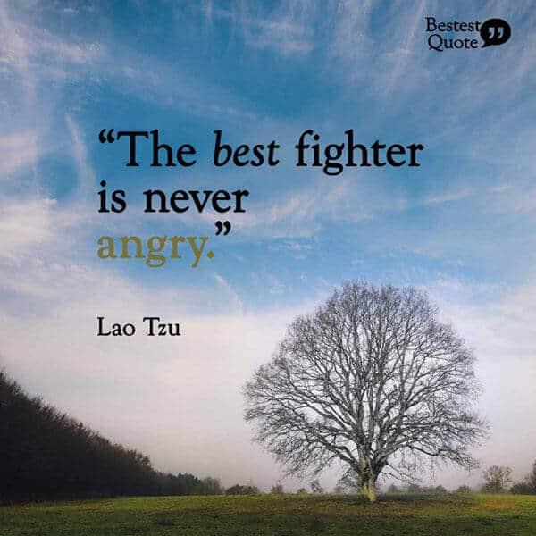 """""""The best fighter is never angry."""" Lao Tzu"""