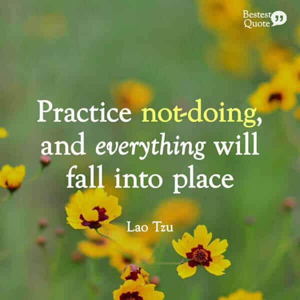 """""""Practice not-doing, and everything will fall into place."""" Lao Tzu"""