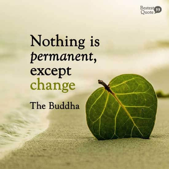 """""""Nothing is permanent, except change."""" The Buddha"""